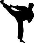 MMA Competitor - success through mental training